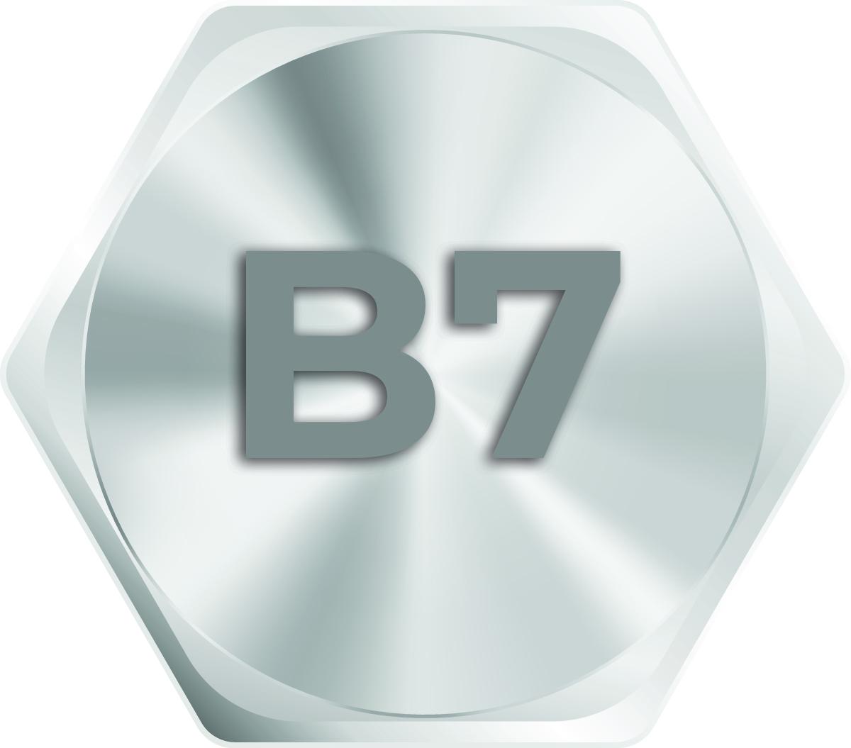 b7-hex-bolts